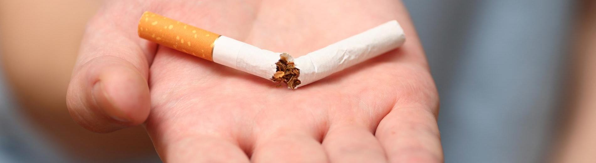 Man trying to quit smoking. A broken cigarette on the palm. Conceptual image. Close-up.